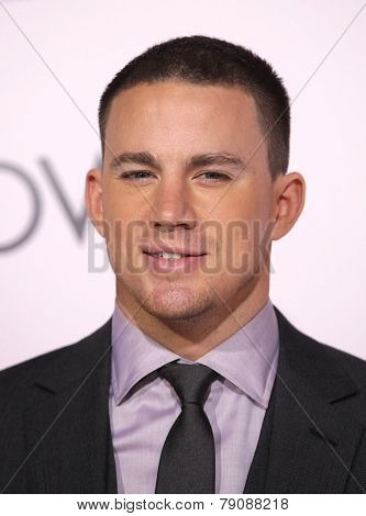 LOS ANGELES - FEB 06:  CHANNING TATUM arrives to the 'The Vow' World Premiere  on February 06, 2012 in Hollywood, CA