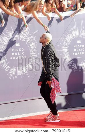 LOS ANGELES - AUG 24:  Chris Brown arrives to the 2014 Mtv Vidoe Music Awards on August 24, 2014 in Los Angeles, CA