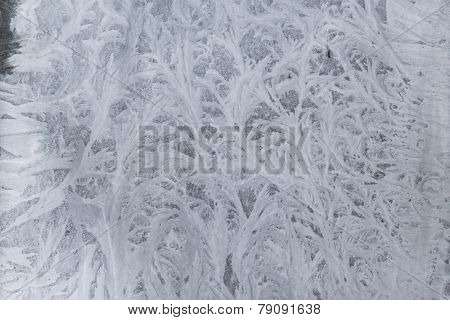 Feathery frost pattern - ice flowers on window glass