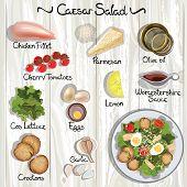stock photo of caesar salad  - Vector ingredients for Caesar salad - JPG