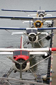 stock photo of float-plane  - Commuter float planes parked at the dock - JPG