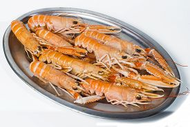 stock photo of norway lobster  - Tray of norway lobster on white background - JPG