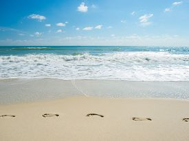 image of footprint  - Footprints in the sand on the beach - JPG