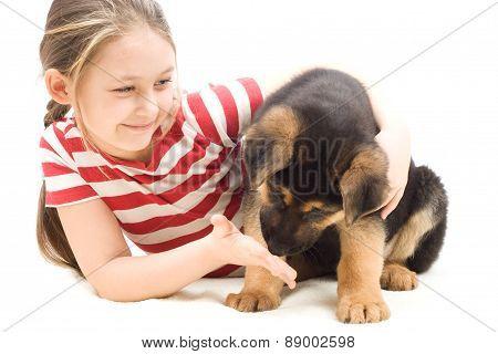Puppy Sniffs The Hand