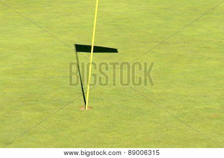 Go Golfing