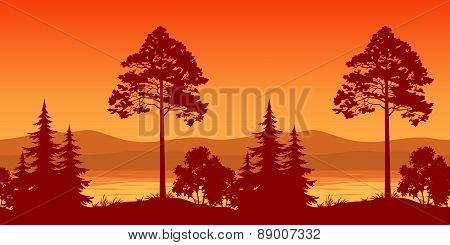 Seamless Landscape, Trees on Bank of Mountain Lake
