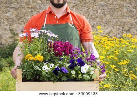 Young Florist With Spring Flowers