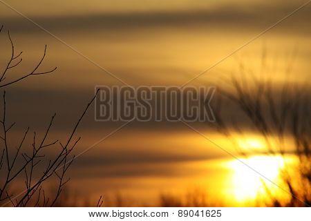 Sunrise on a Northern Lake
