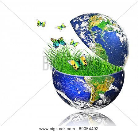 Environmental energy concept. (Elements of this image furnished by NASA)