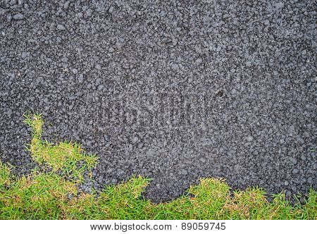 Dark Asphalted Surface With A Part Of Green Grass