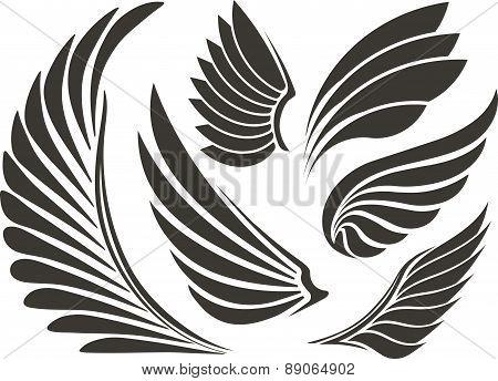 Set Of Five Wings