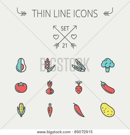 Food and drink thin line icon set for web and mobile. Set includes-beans, eggplant, potato, cauliflower, turnip, corn, avocado, carrot  icons. Modern minimalistic flat design. Vector icon with dark