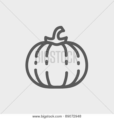 Squash icon thin line for web and mobile, modern minimalistic flat design. Vector dark grey icon on light grey background.