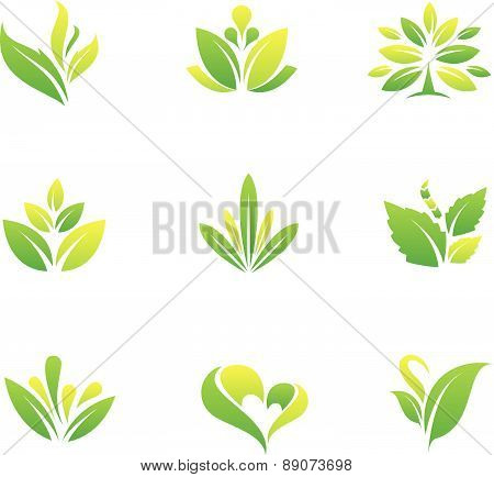 Green nature and tree symbol