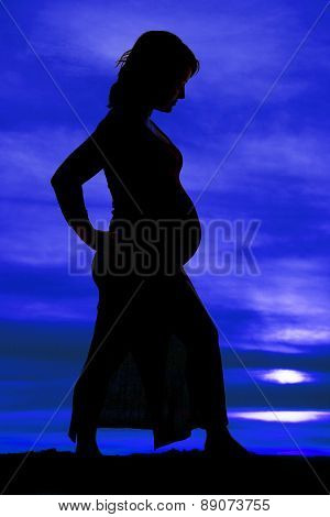 Silhouette Of Woman In Dress Pregnant From Side