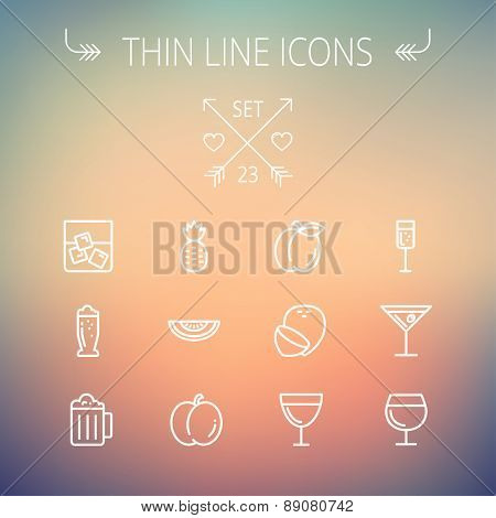 Food and drink thin line icon set for web and mobile. Set includes-pineapple, orange, ine, tequilla, beer, melon icons. Mode- rn minimalistic flat design. Vector white icon on gradient mesh background