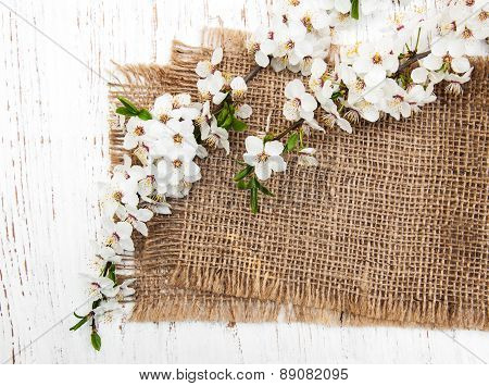 Branch Of The Cherry Blossoms And Burlap