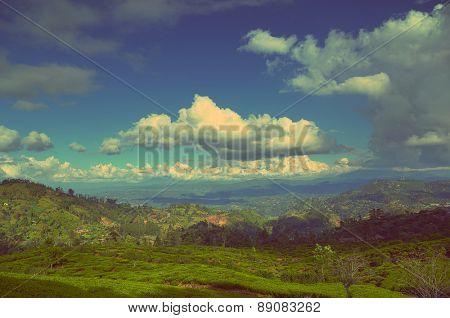 Beautiful mountain landscape with tea plantation in Sri Lanka - vintage retro style