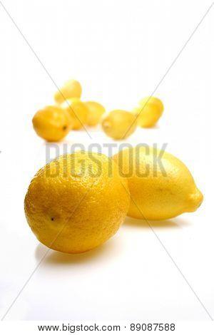 Studio shot of lemons on white background