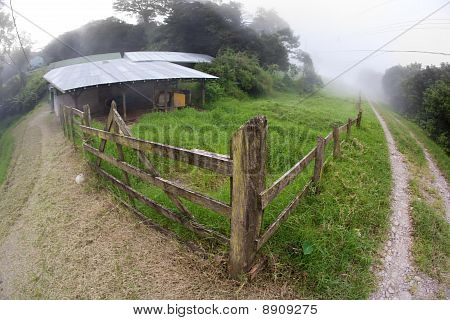 Costa Rican Dairy Farm