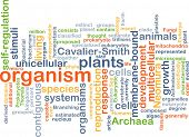 image of organism  - Background text pattern concept wordcloud illustration of organism - JPG