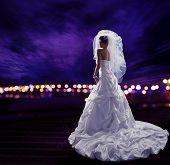 pic of bridal veil  - Bride in Wedding Dress with Veil Fashion Bridal Beauty Portrait Long Draped Cloth with Folds Rear View over Night City Lights Sky - JPG