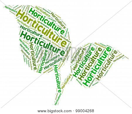 Horticulture Word Represents Flower Garden And Agricultural