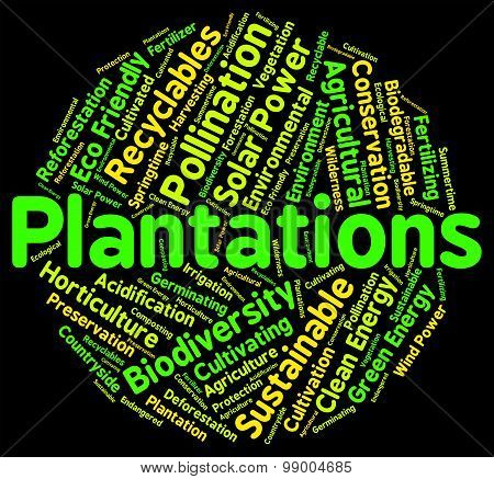Plantations Word Represents Ranches Farms And Farm