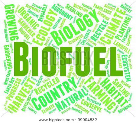 Biofuel Word Means Green Energy And Biogas