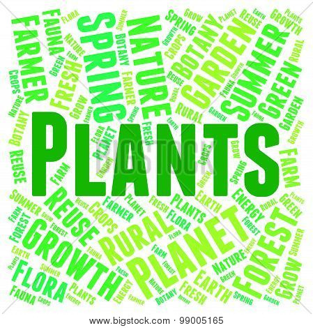 Plants Word Indicates Flora Text And Botanical