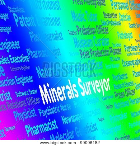 Minerals Surveyor Represents Hire Ores And Work