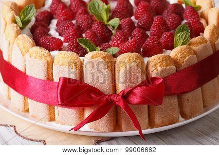 Beautiful Raspberry Charlotte Cake On A Plate Close-up. Horizontal