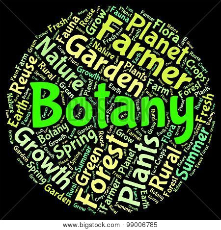 Botany Word Indicates Plant Life And Botanical