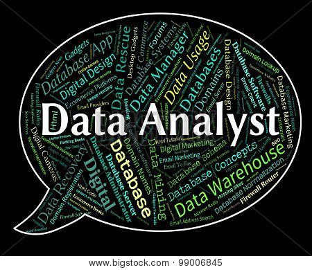 Data Analyst Shows Analyser Words And Analysts