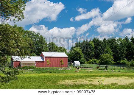 Lamma Farm, Eastern Minnesota