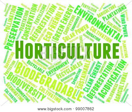 Horticulture Word Indicates Flower Garden And Agrarian