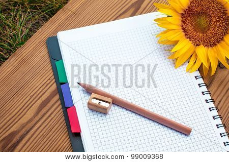 Notebook with pencil, sharpener and sunflower