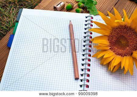 Opened spiral notebook with pencil and sunflower
