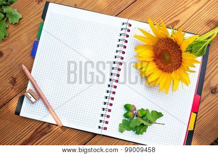 Opened spiral notebook with pencil, sharpener and sunflower