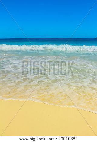 Resort Surf Summer