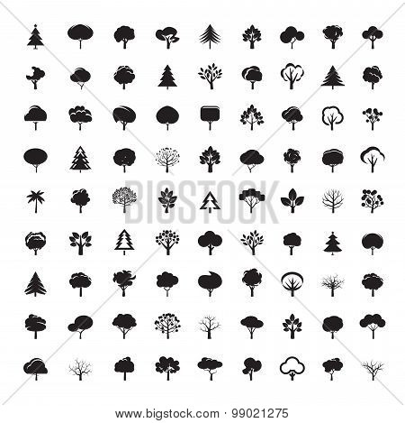 Set Of Black Trees. Vector Symbol And Icon.