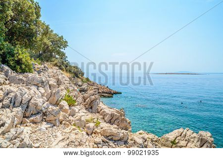 Rocky Beach With Bushes And Trees And Crystal Clear Blue Adriatic Sea With Islands In The Background
