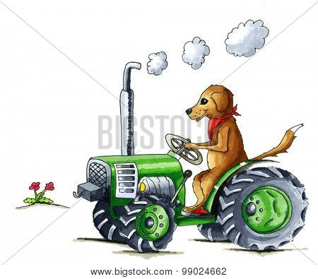 From the series dog - Illustration of funny dog on tractor
