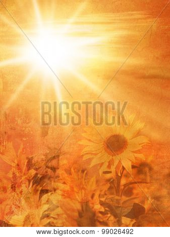 Natural autumn background with sunflower field at sunset in soft vintage style - late summer concept