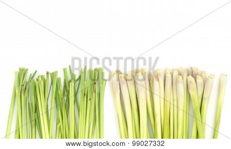 Lemon Grass  On White