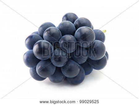 Plump Kyoho grapes (giant mountain grapes) isolated on white.