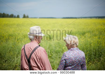 Rear view of two seniors walking down meadow on summer day