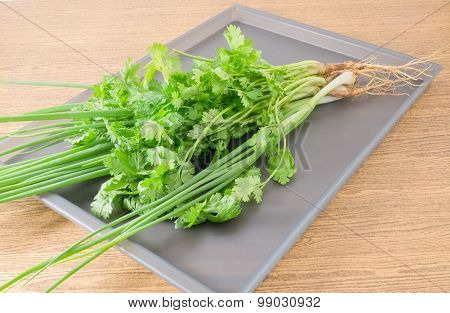 Chinese Parsley And Scallion On Grey Tray