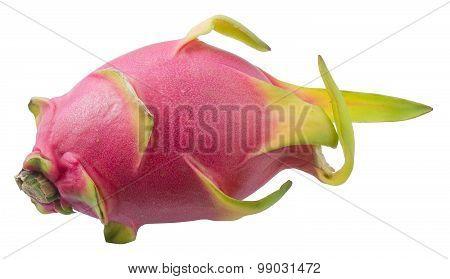 Fresh Dragon Fruit On A White Background
