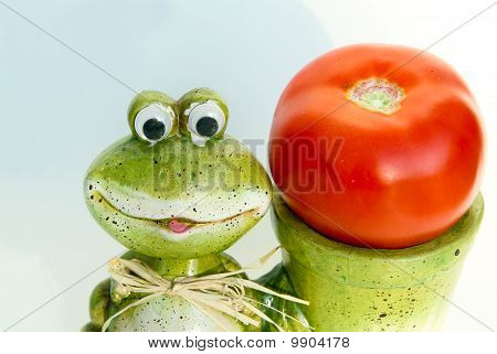Frog And A Tomato